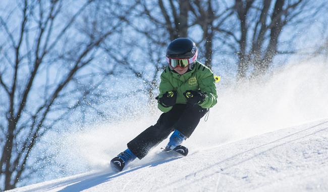 Ski Chalet Hire France