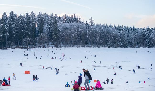 France Ski Chalet