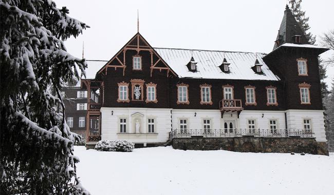 Luxury Ski Chalet France
