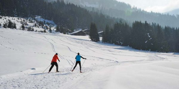 Chatel Ski Resort (7)