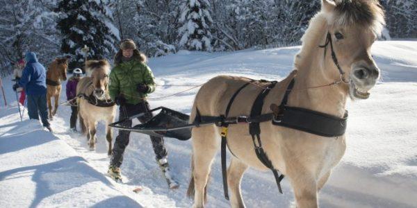 La Clusaz Ski Resort (6)