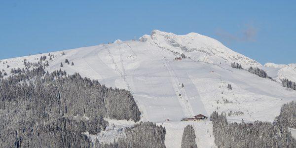 Les Gets Ski Resort (11)