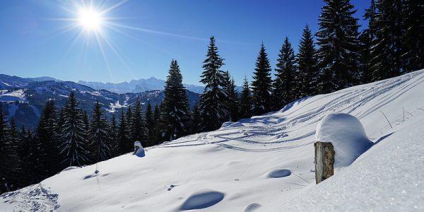 Les Gets Ski Resort (14)