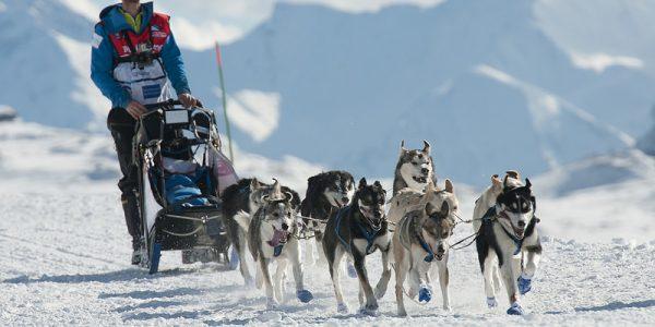 Les Gets Ski Resort (2)