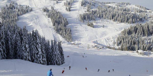 Les Gets Ski Resort (8)