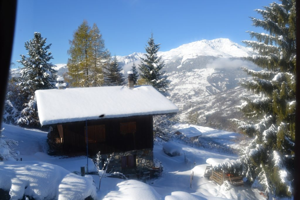 Chalet Les Sorbiers in Les Coches (2)