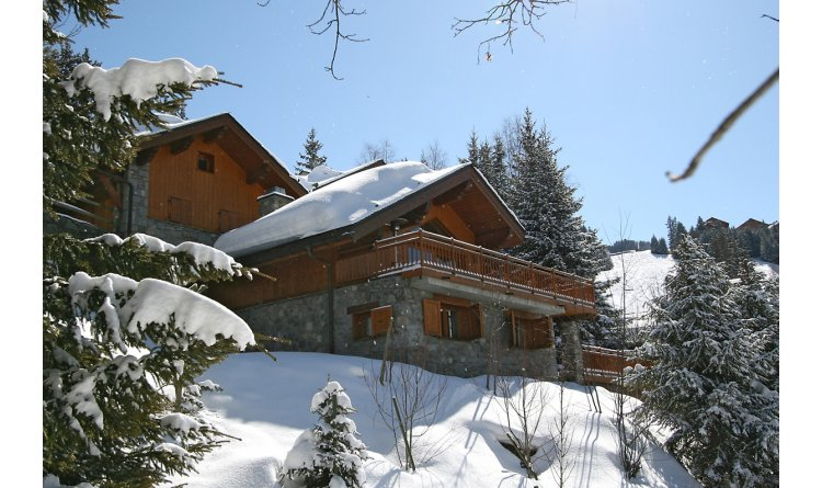 Chalet Bartavelles in Meribel (19)