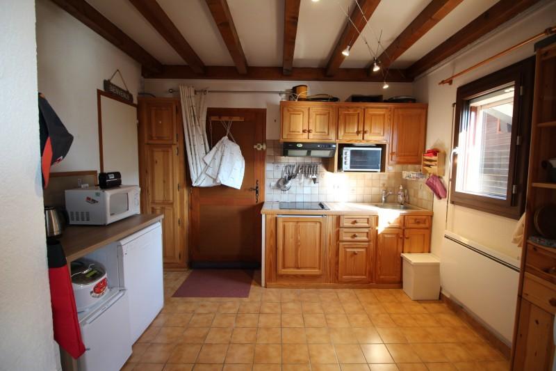 Duplex Close to Pistes in Les Carroz (1)